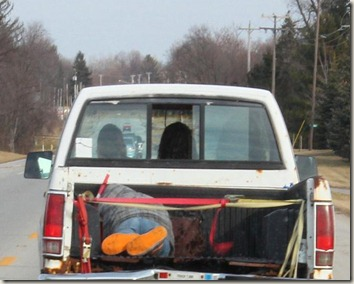 guy in truck