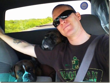 driving with pups